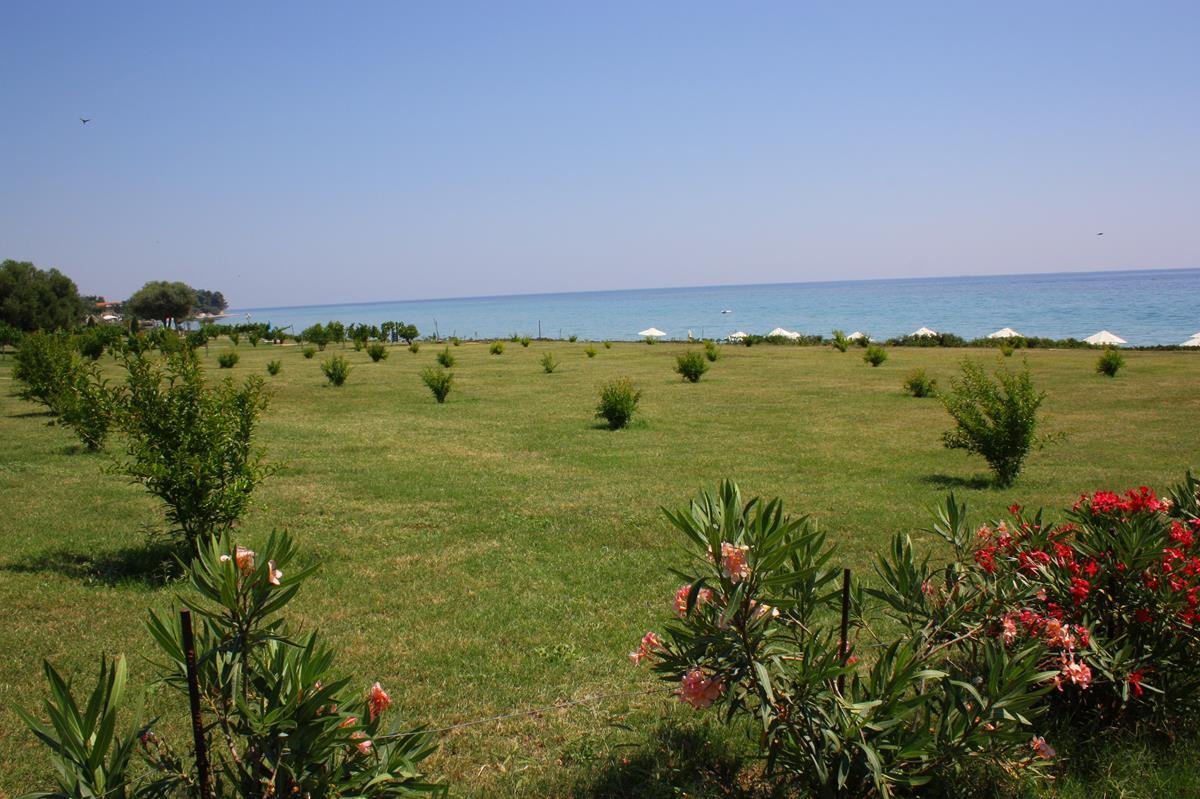 πολυτελη διαμονη χαλκιδικη - Skion Palace Beach Hotel